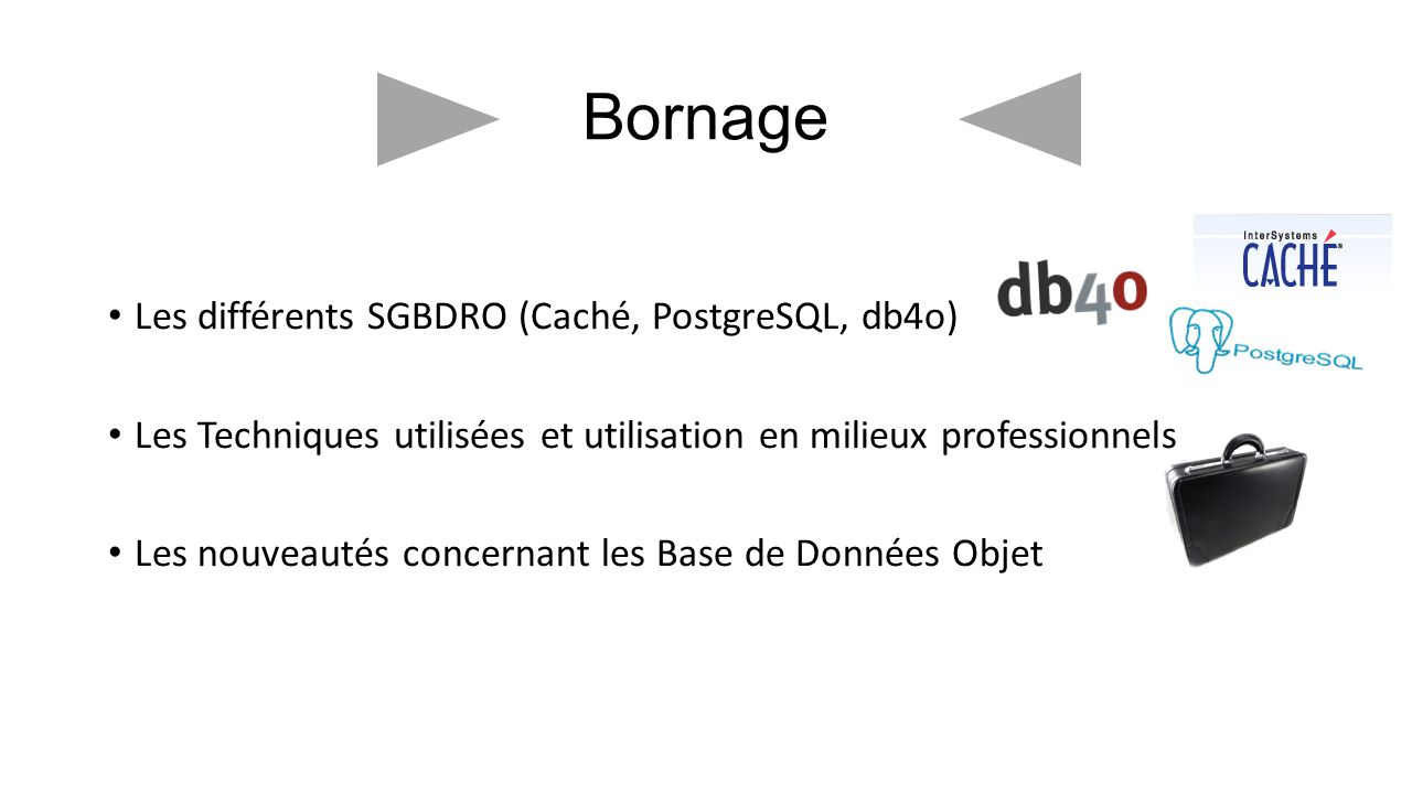 Bornage Les différents SGBDRO (Caché, PostgreSQL, db4o)