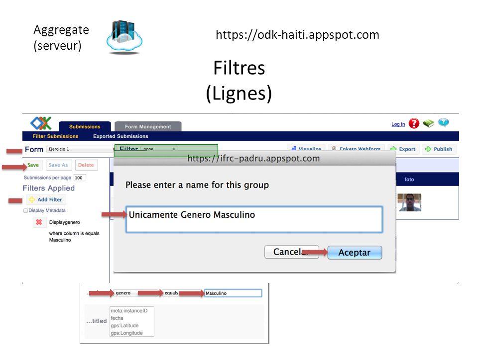 Aggregate (serveur) https://odk-haiti.appspot.com Filtres (Lignes)