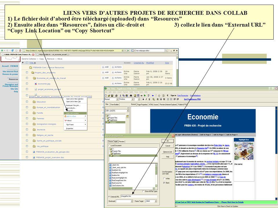LIENS VERS D'AUTRES PROJETS DE RECHERCHE DANS COLLAB 1) Le fichier doit d'abord être téléchargé (uploaded) dans Resources 2) Ensuite allez dans Resources , faites un clic-droit et 3) collez le lien dans External URL Copy Link Location ou Copy Shortcut