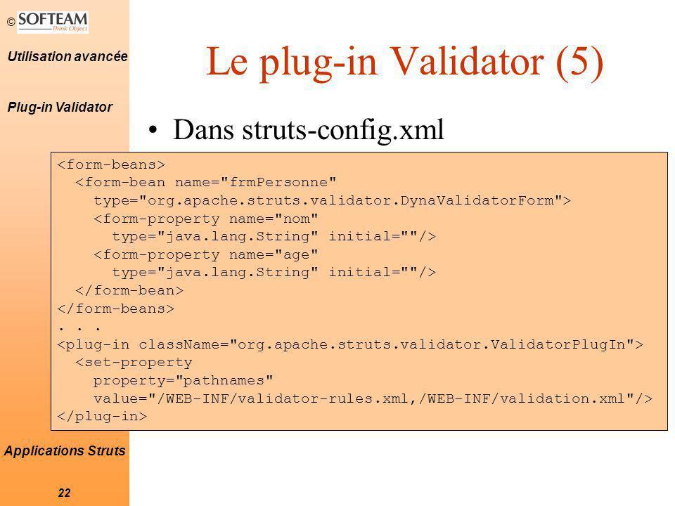Le plug-in Validator (5)