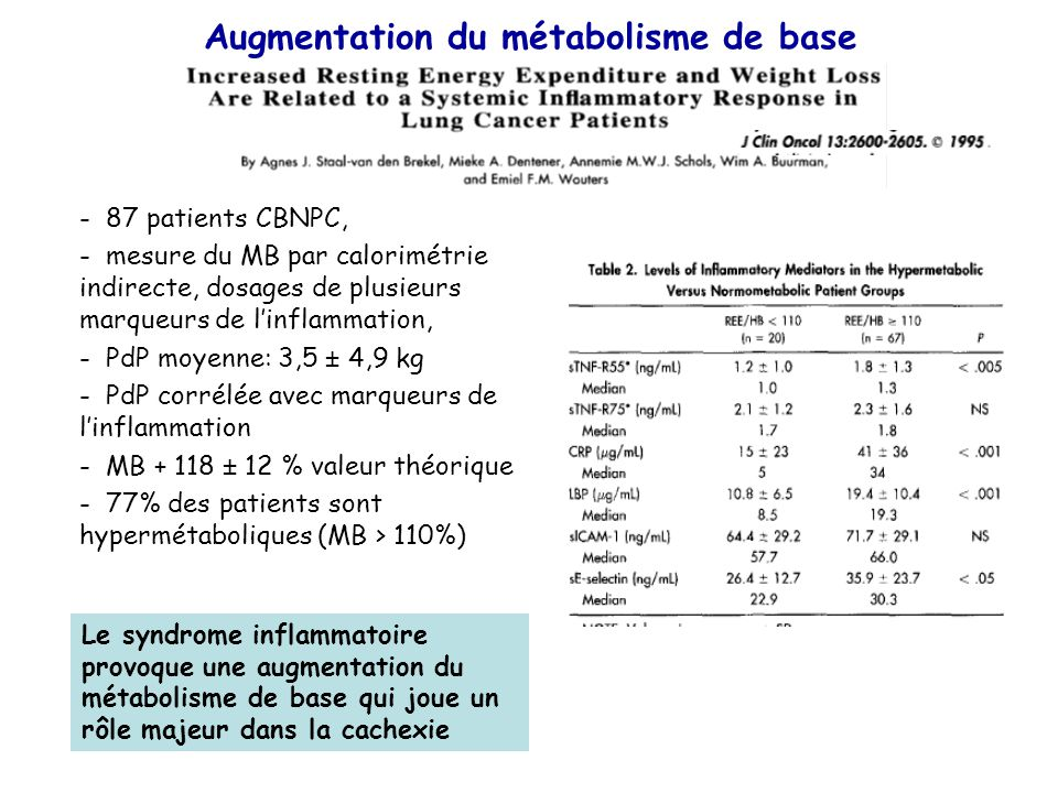 Augmentation du métabolisme de base