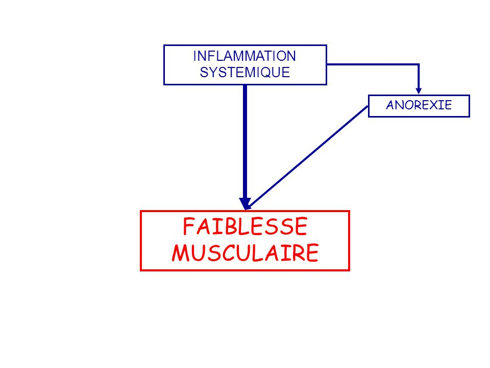 INFLAMMATION SYSTEMIQUE