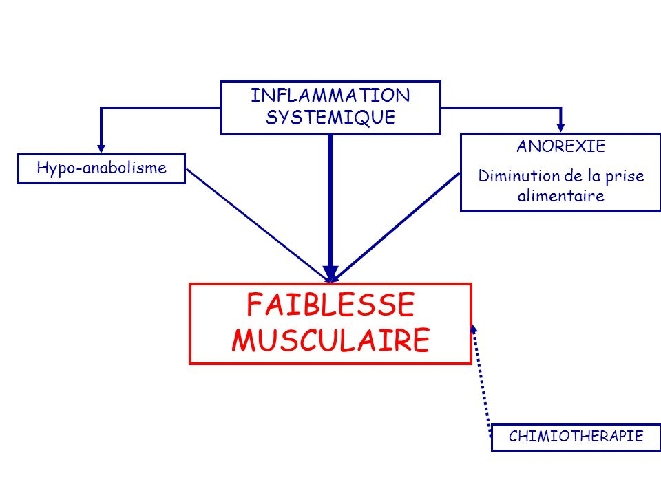 FAIBLESSE MUSCULAIRE INFLAMMATION SYSTEMIQUE ANOREXIE