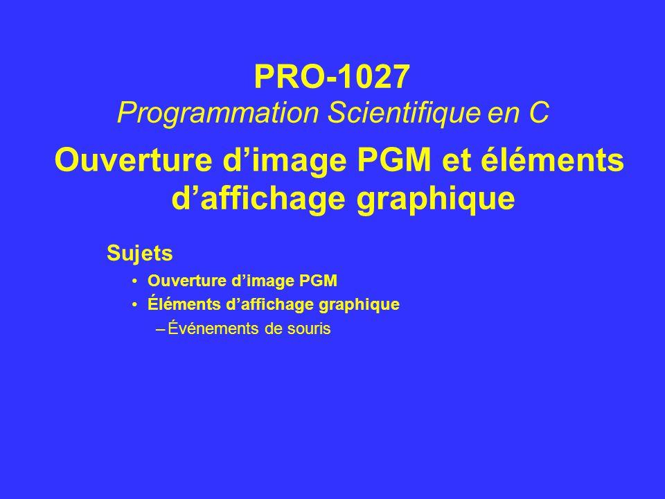 Ouverture d'image PGM et éléments d'affichage graphique