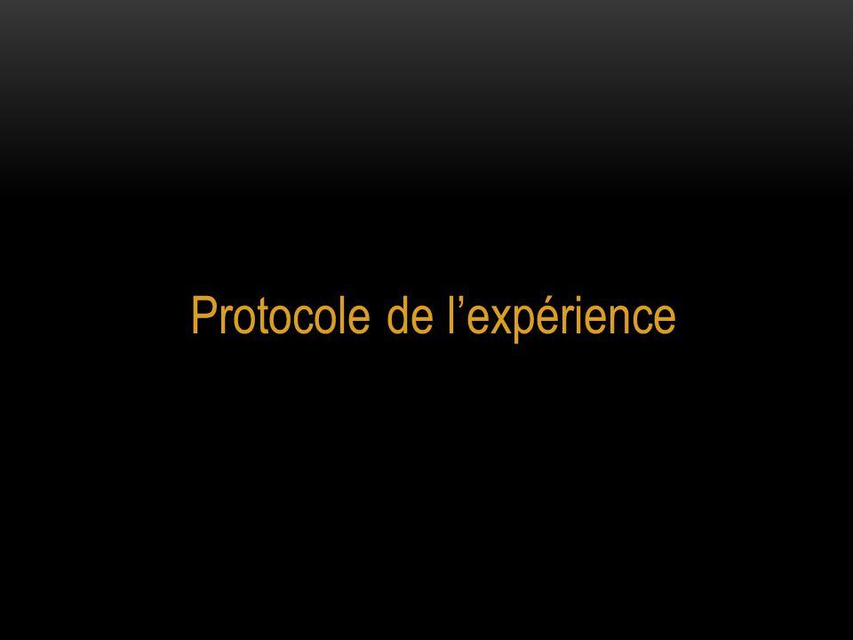 Protocole de l'expérience