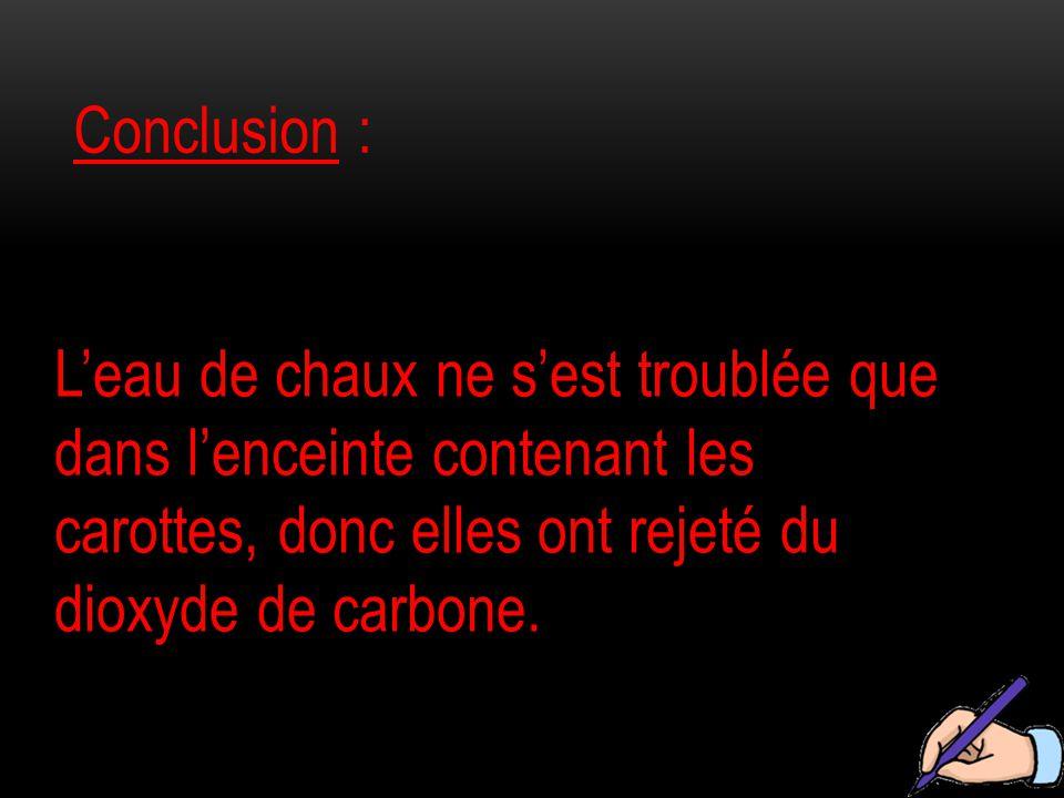 Conclusion : L'eau de chaux ne s'est troublée que dans l'enceinte contenant les carottes, donc elles ont rejeté du dioxyde de carbone.