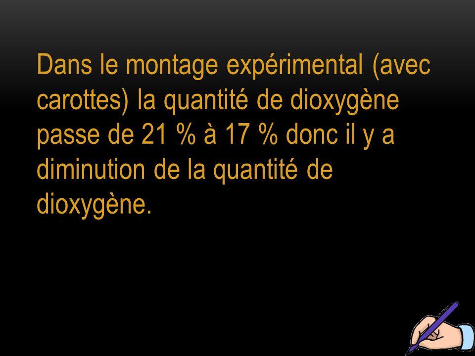 Dans le montage expérimental (avec carottes) la quantité de dioxygène passe de 21 % à 17 % donc il y a diminution de la quantité de dioxygène.