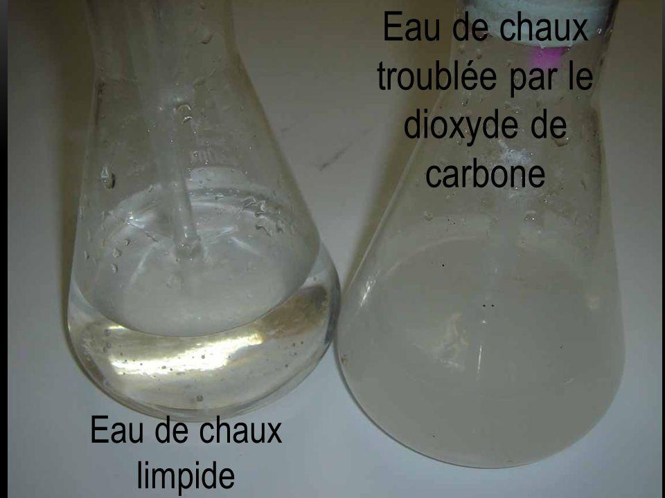 Eau de chaux troublée par le dioxyde de carbone