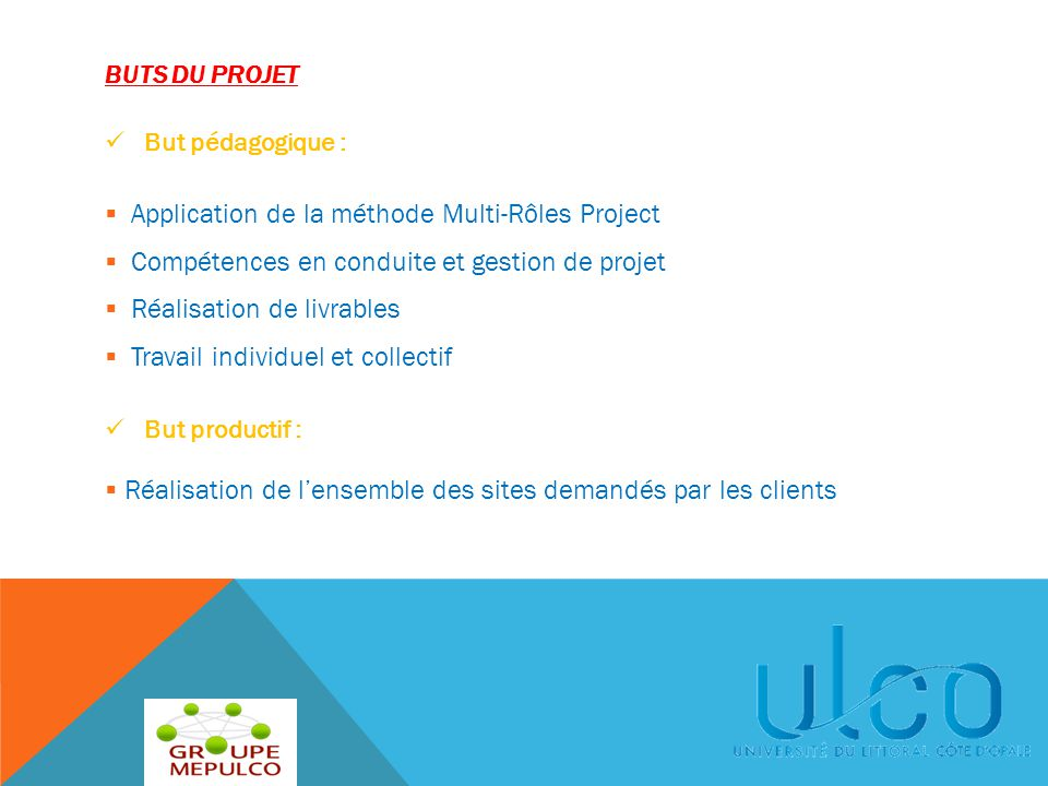 Application de la méthode Multi-Rôles Project