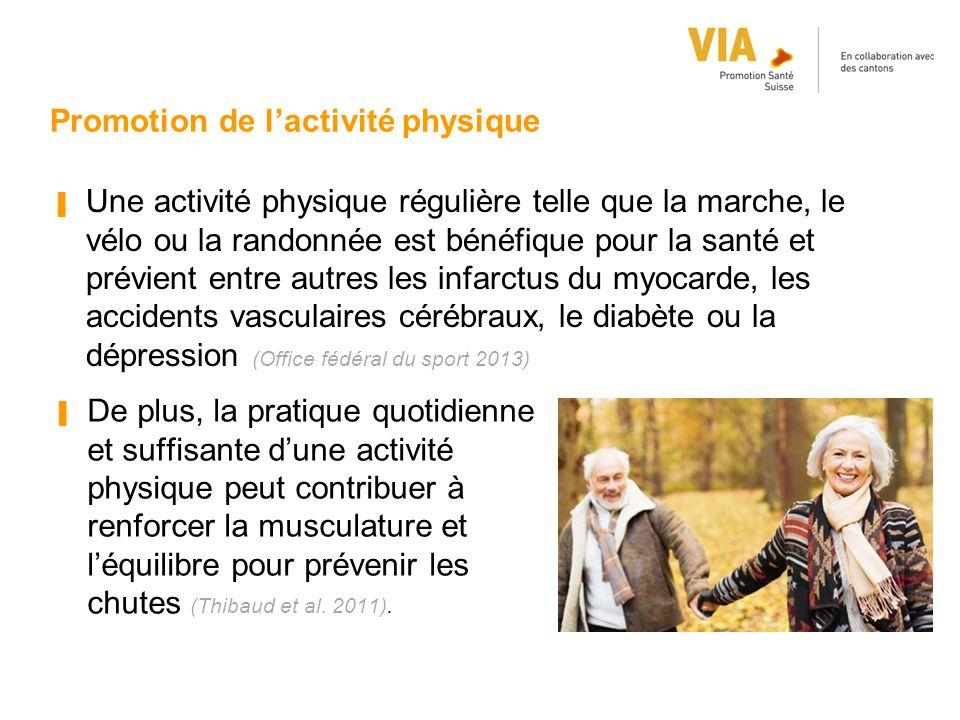 Promotion de l'activité physique