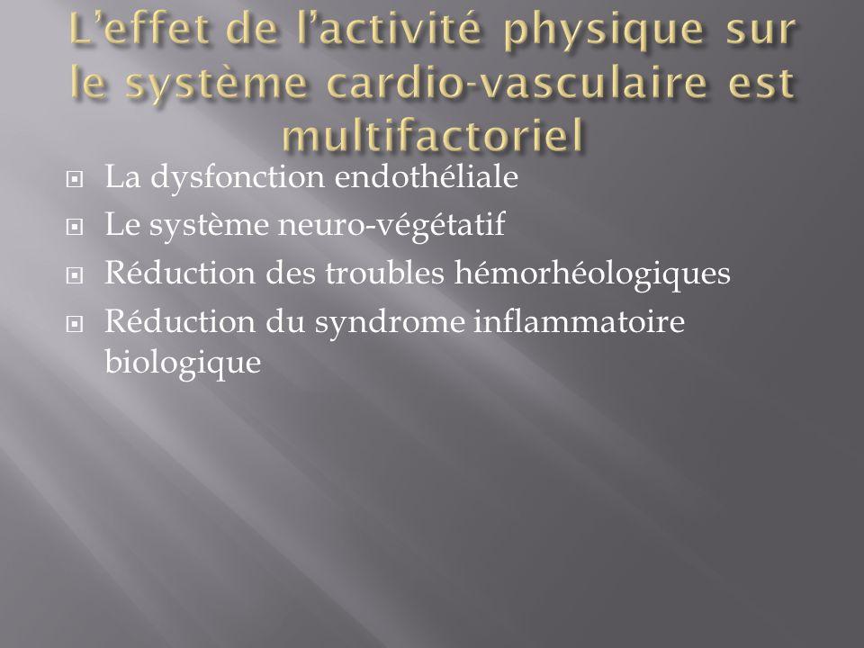 L'effet de l'activité physique sur le système cardio-vasculaire est multifactoriel