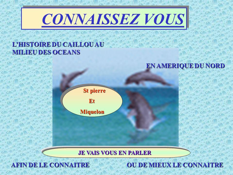 CONNAISSEZ VOUS L'HISTOIRE DU CAILLOU AU MILIEU DES OCEANS