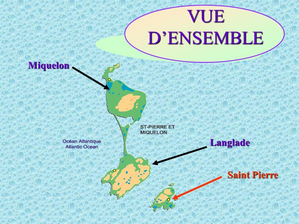 VUE D'ENSEMBLE Miquelon Langlade Saint Pierre