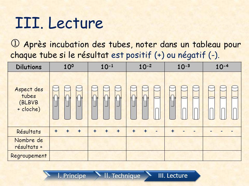 III. Lecture  Après incubation des tubes, noter dans un tableau pour chaque tube si le résultat est positif (+) ou négatif (-).
