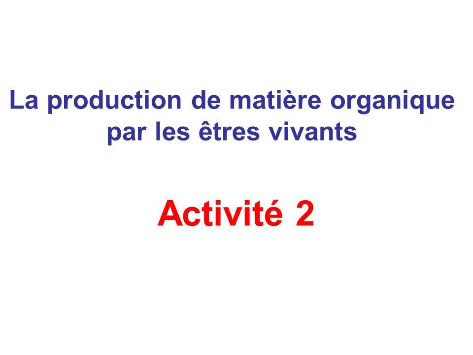 La production de matière organique par les êtres vivants