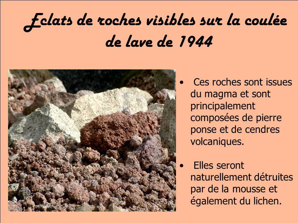 Eclats de roches visibles sur la coulée