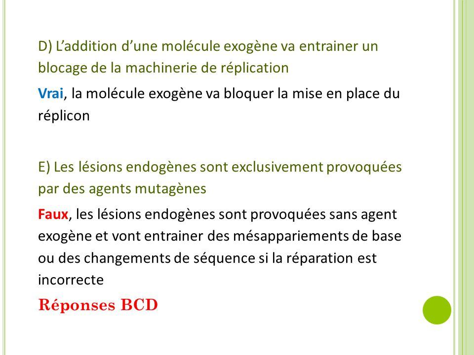 D) L'addition d'une molécule exogène va entrainer un blocage de la machinerie de réplication Vrai, la molécule exogène va bloquer la mise en place du réplicon E) Les lésions endogènes sont exclusivement provoquées par des agents mutagènes Faux, les lésions endogènes sont provoquées sans agent exogène et vont entrainer des mésappariements de base ou des changements de séquence si la réparation est incorrecte Réponses BCD
