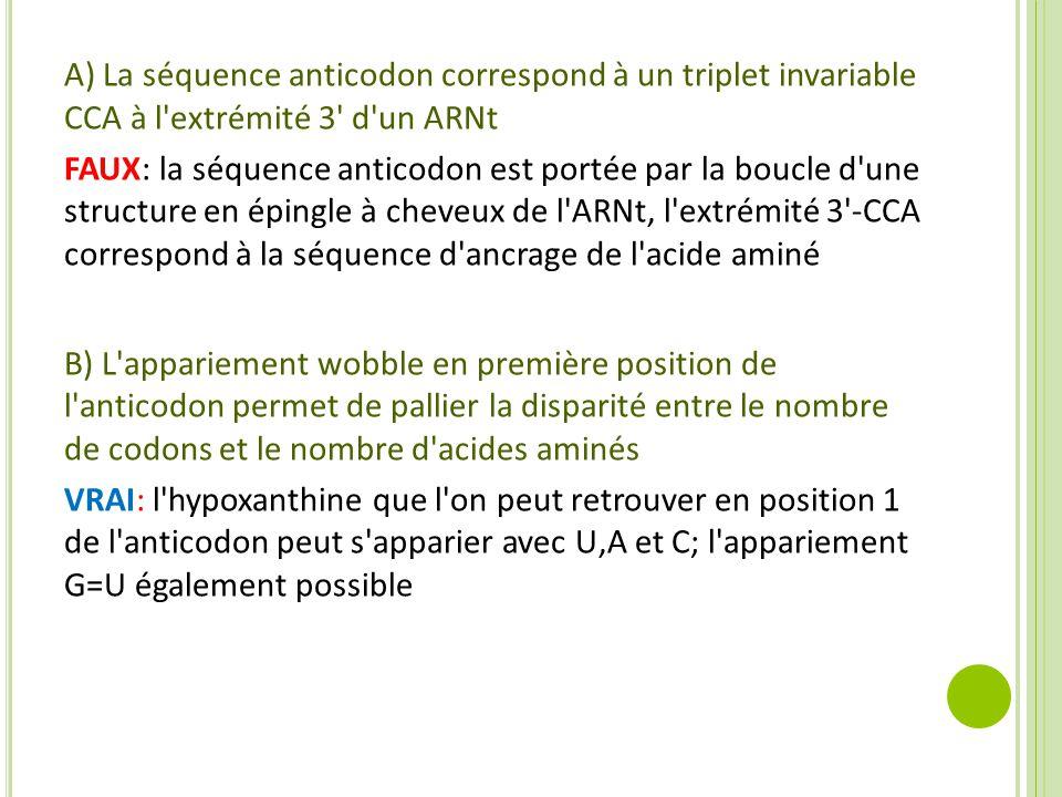 A) La séquence anticodon correspond à un triplet invariable CCA à l extrémité 3 d un ARNt