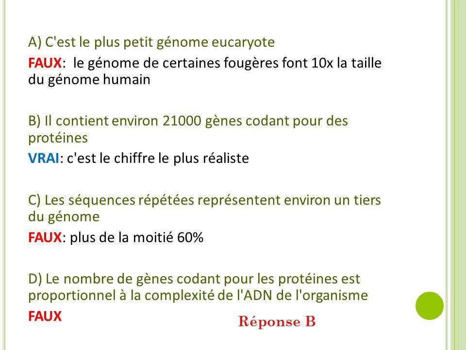 A) C est le plus petit génome eucaryote