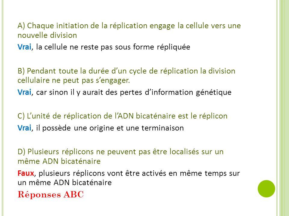A) Chaque initiation de la réplication engage la cellule vers une nouvelle division