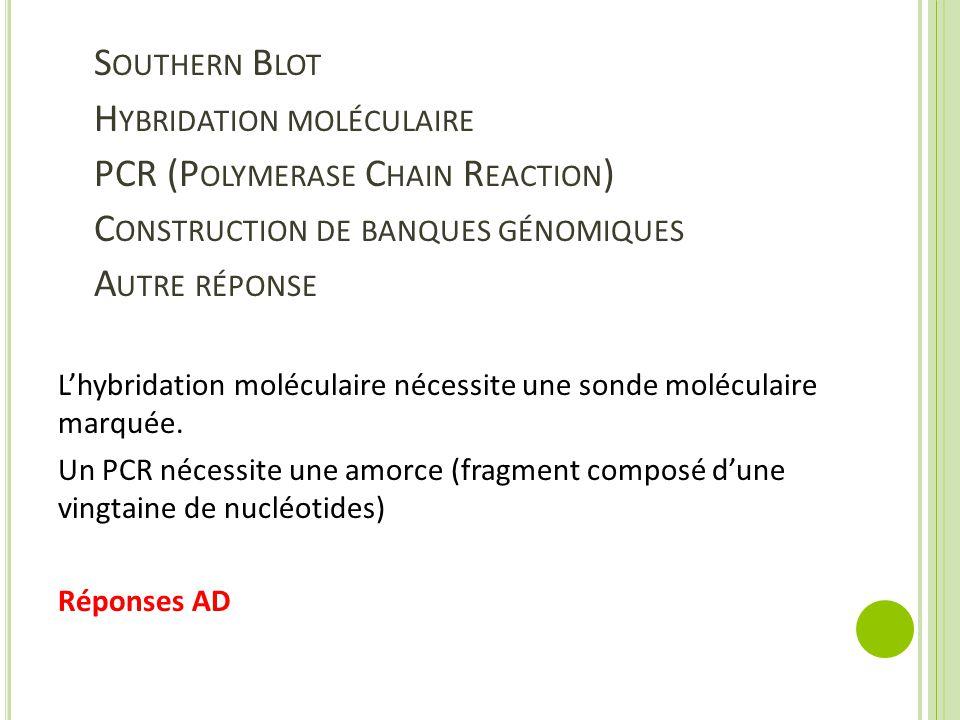 Southern Blot Hybridation moléculaire PCR (Polymerase Chain Reaction) Construction de banques génomiques Autre réponse