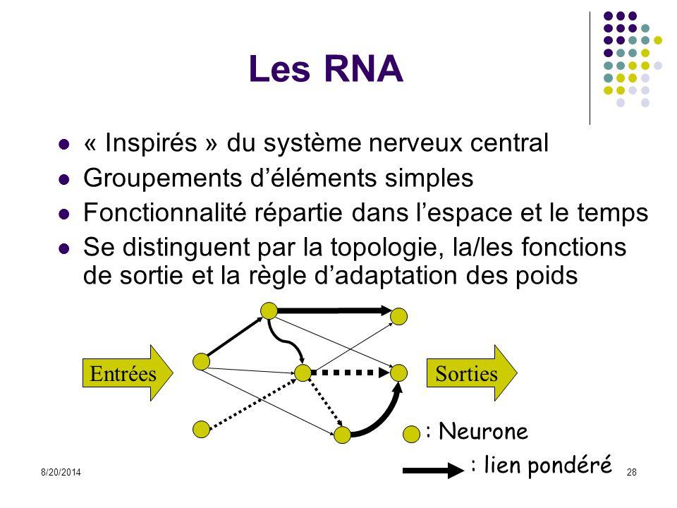 Les RNA « Inspirés » du système nerveux central