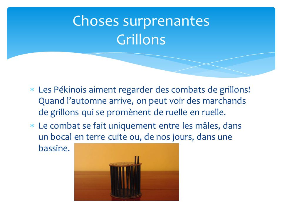 Choses surprenantes Grillons