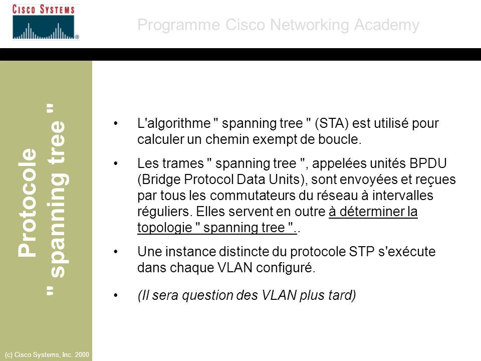 L algorithme spanning tree (STA) est utilisé pour calculer un chemin exempt de boucle.