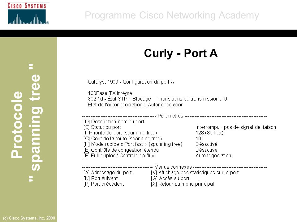 Curly - Port A