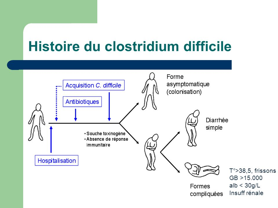 Histoire du clostridium difficile