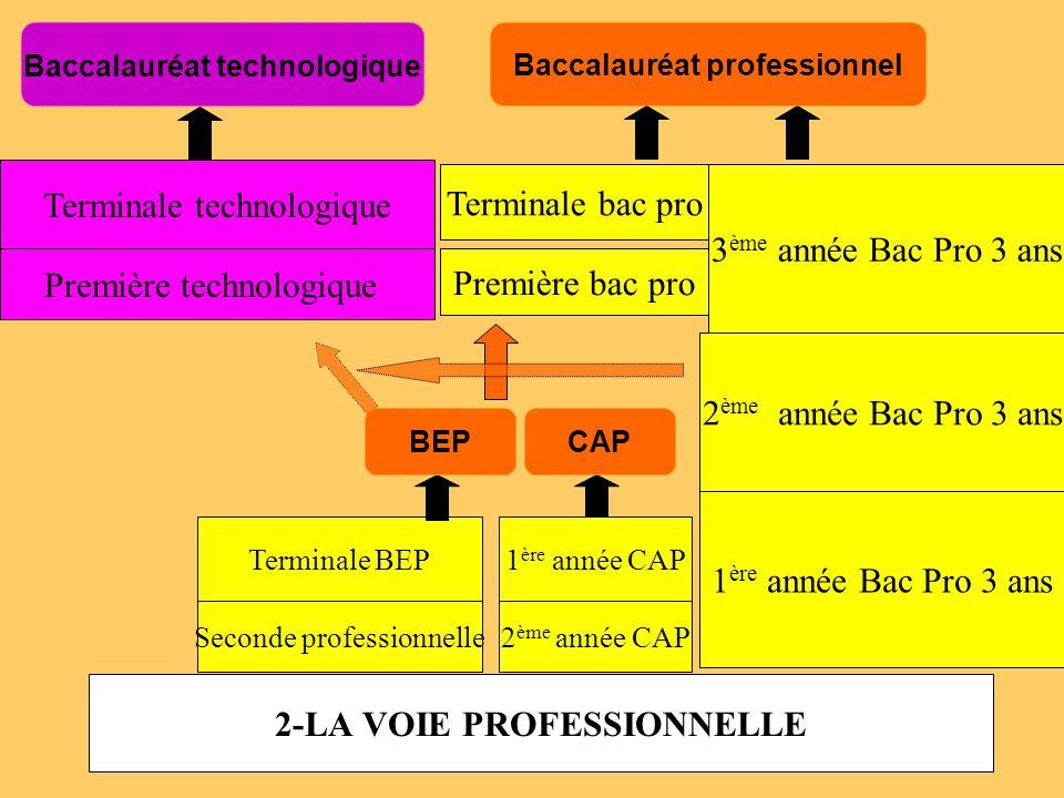 2-LA VOIE PROFESSIONNELLE