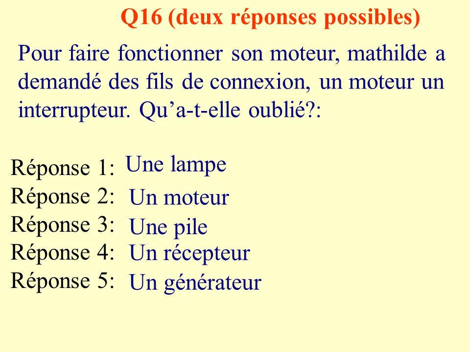 Q16 (deux réponses possibles)