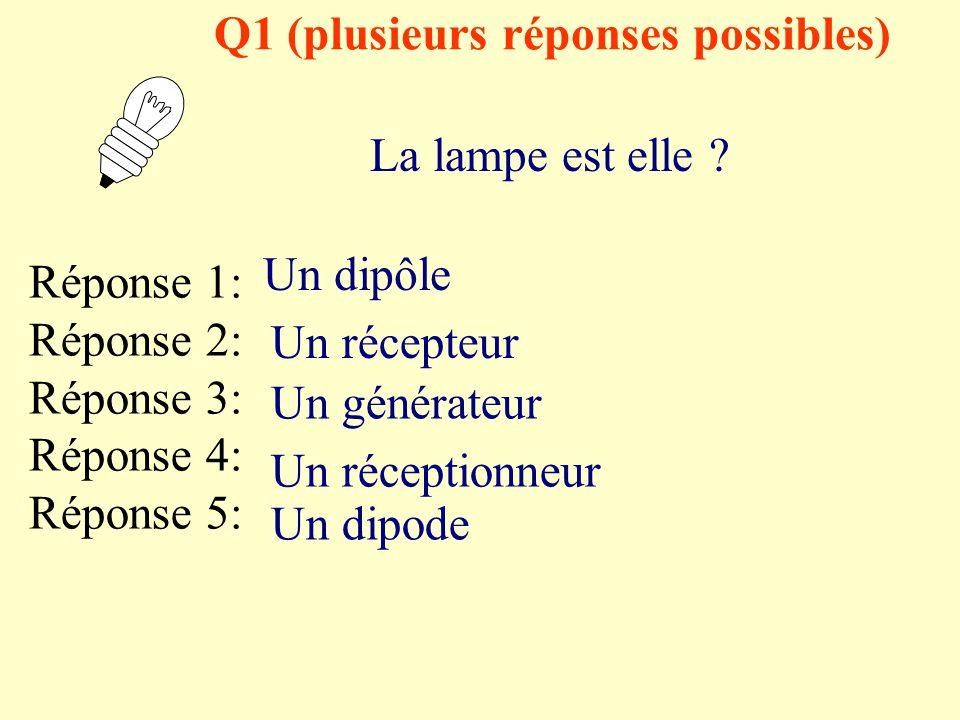 Q1 (plusieurs réponses possibles)
