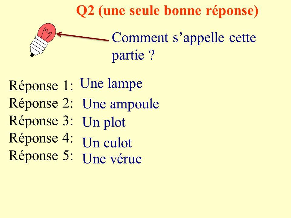 Q2 (une seule bonne réponse)