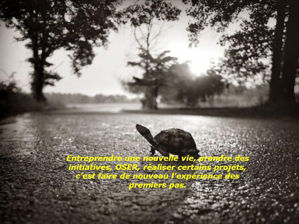 Entreprendre une nouvelle vie, prendre des initiatives, OSER, réaliser certains projets, c'est faire de nouveau l'expérience des premiers pas.