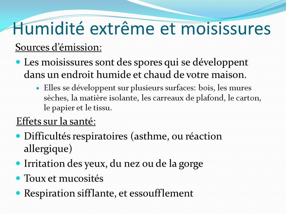 Humidité extrême et moisissures