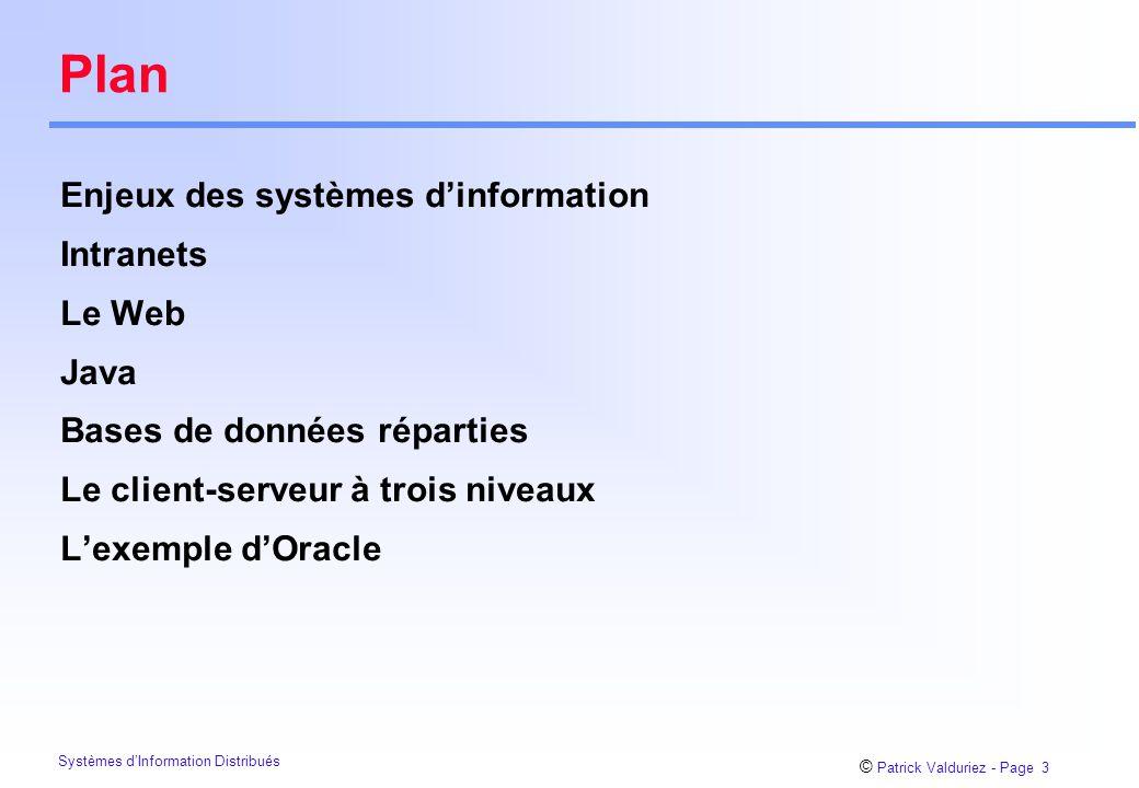 Plan Enjeux des systèmes d'information Intranets Le Web Java