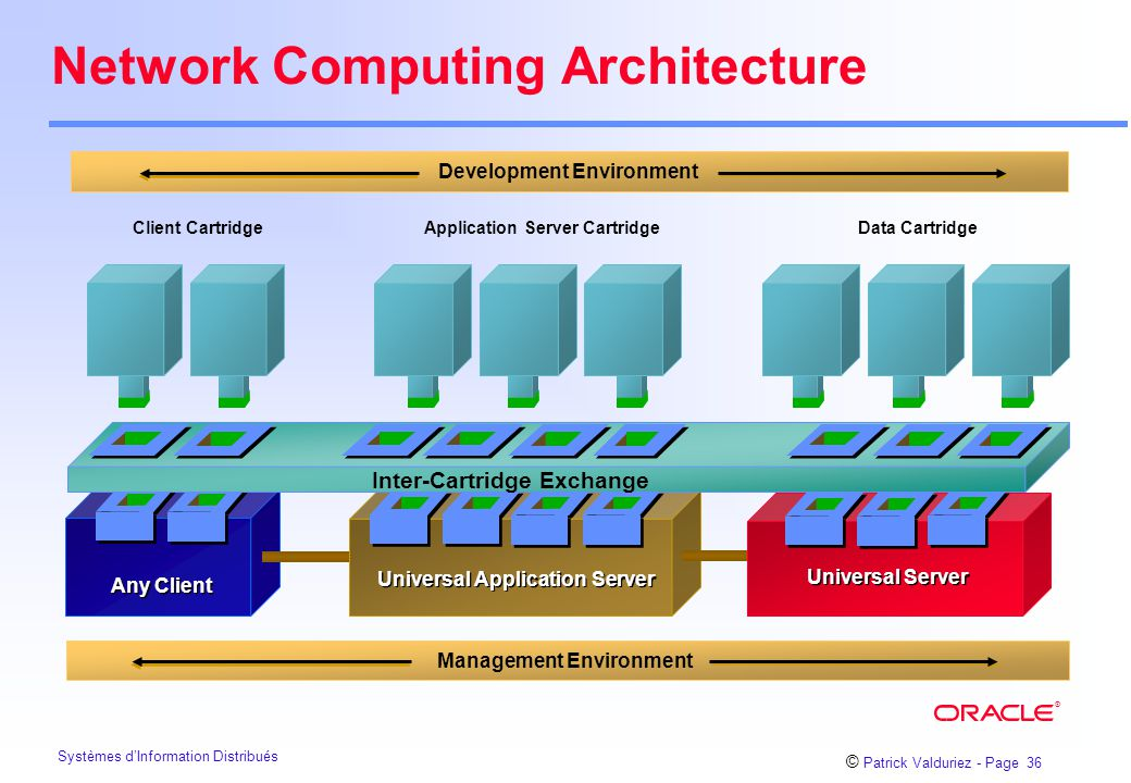 Network Computing Architecture
