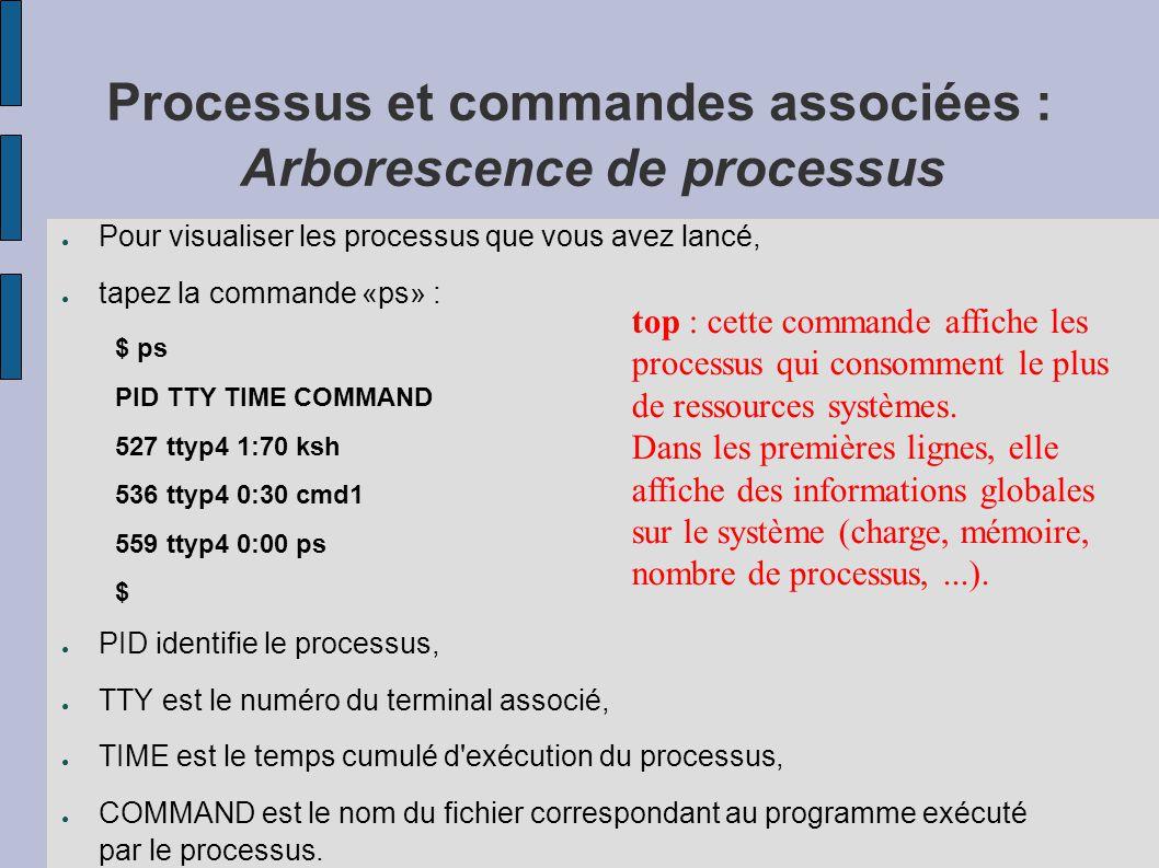 Processus et commandes associées : Arborescence de processus