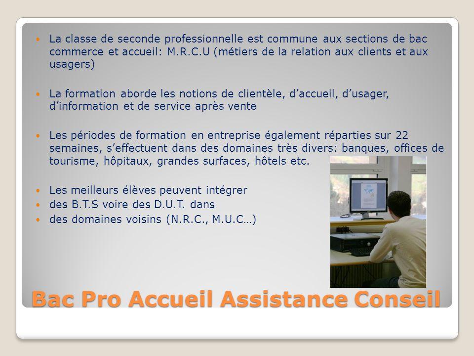 Bac Pro Accueil Assistance Conseil