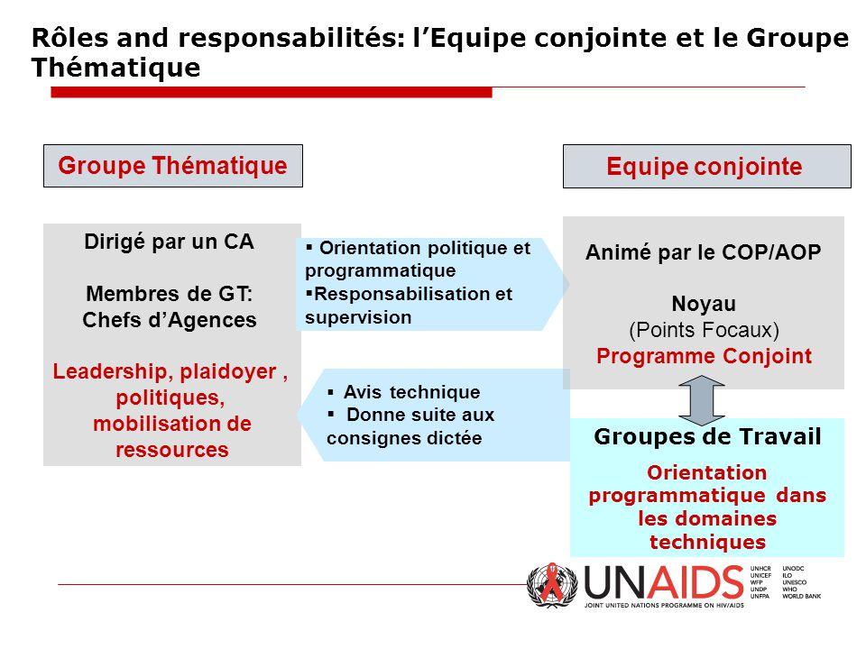 Rôles and responsabilités: l'Equipe conjointe et le Groupe Thématique