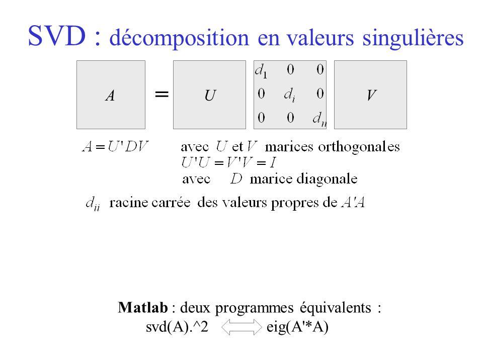 SVD : décomposition en valeurs singulières