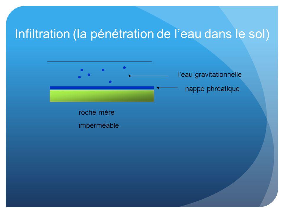 Infiltration (la pénétration de l'eau dans le sol)
