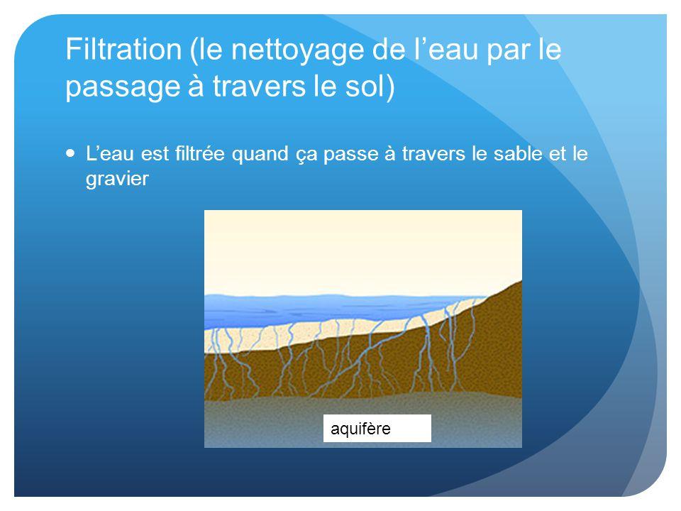 Filtration (le nettoyage de l'eau par le passage à travers le sol)