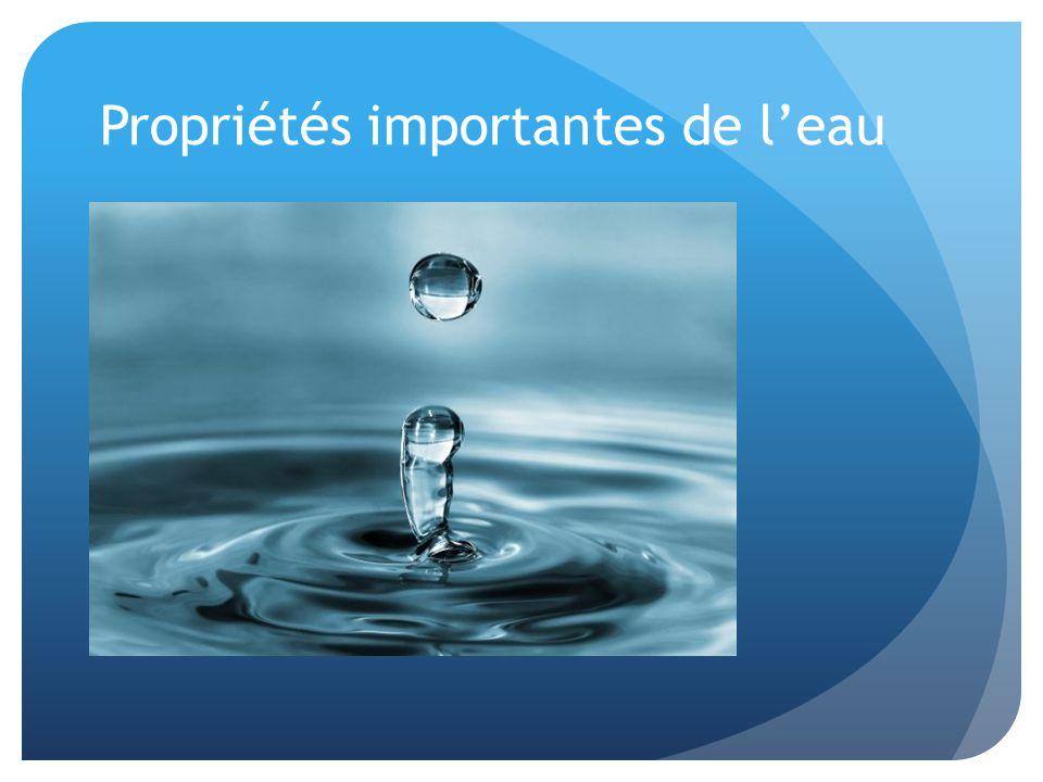 Propriétés importantes de l'eau