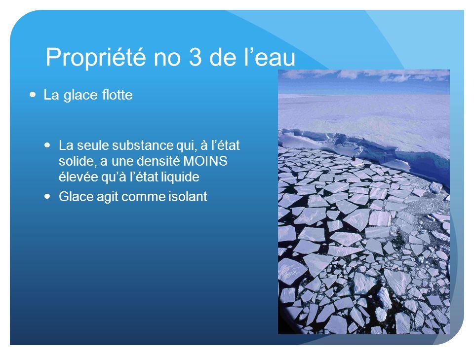 Propriété no 3 de l'eau La glace flotte
