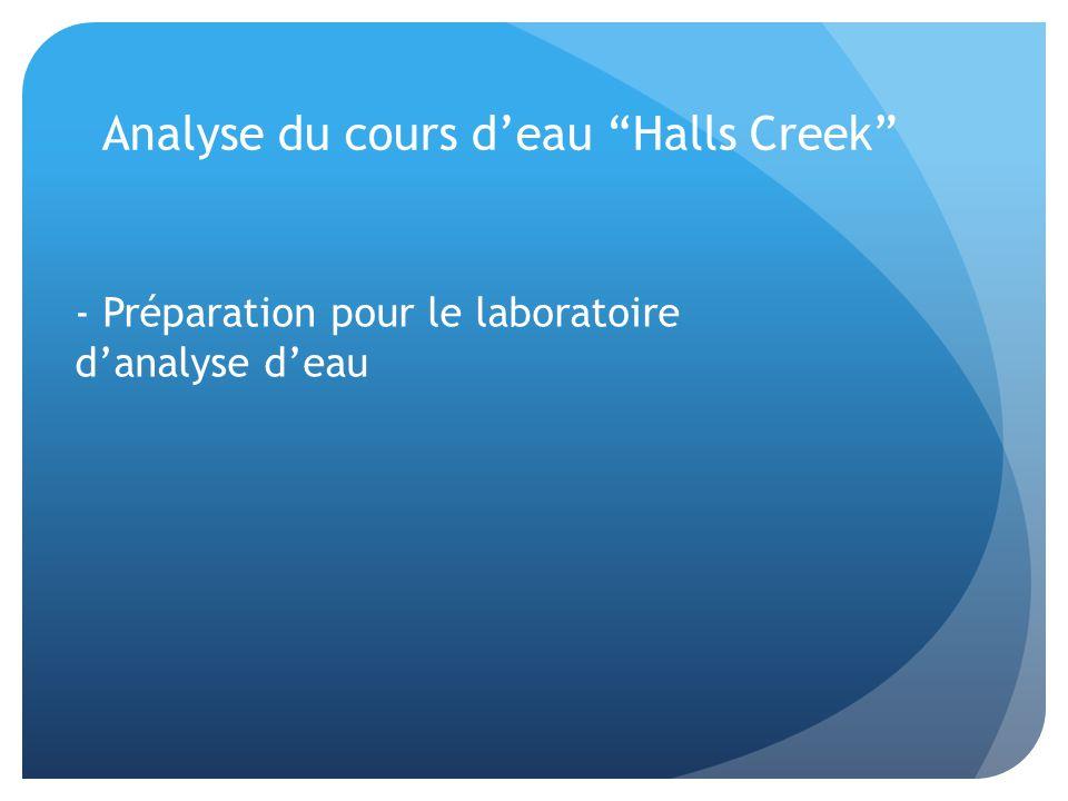 Analyse du cours d'eau Halls Creek