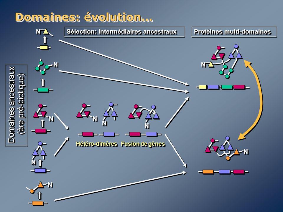 Domaines: évolution… Domaines ancestraux (ère pré-biotique) N