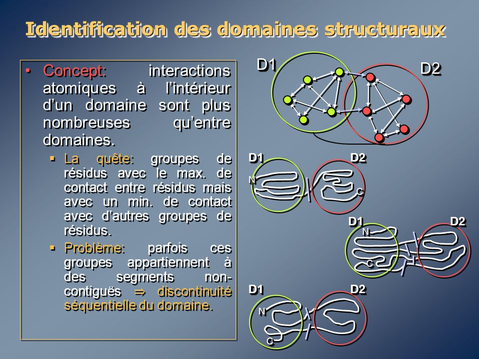 Identification des domaines structuraux