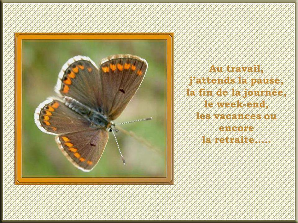 Au travail, j'attends la pause, la fin de la journée, le week-end, les vacances ou encore la retraite…..